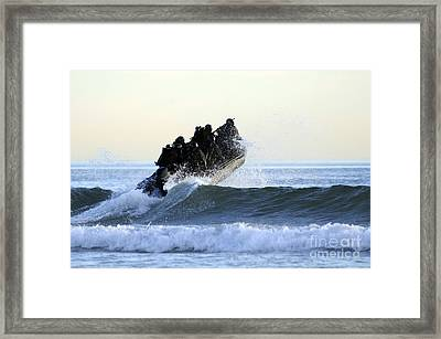 Students In Navy Seals Qualification Framed Print