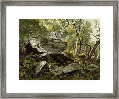 Study From Nature   Rocks And Trees Framed Print