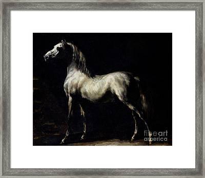 Study Of A Dapple Grey Framed Print by Theodore Gericault