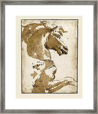 Study Of A Horse In Profile Framed Print