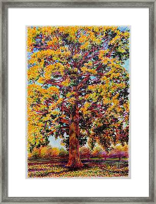 Study Of A Maple Tree In Autumn Framed Print