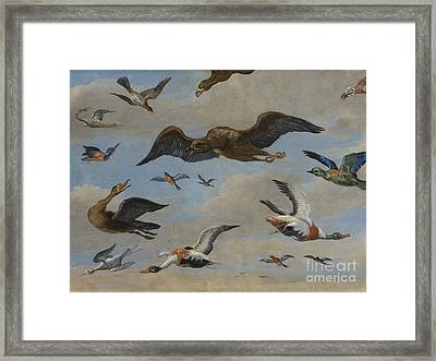 Study Of Birds On A Sky Background Framed Print by MotionAge Designs