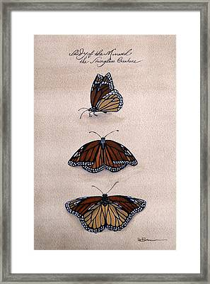 Study Of The Stain-glass Creature Framed Print by Leslie M Browning