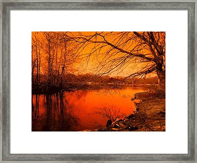 Studying The Sunset Framed Print