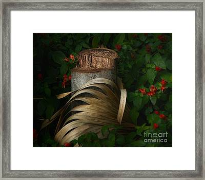 Stump And Frond Framed Print