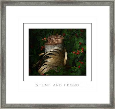 Stump And Frond Poster Framed Print