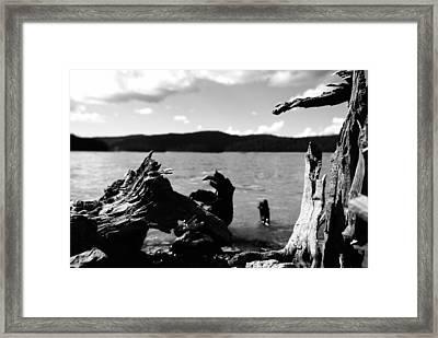 Stump Lake Framed Print by Tom Melo