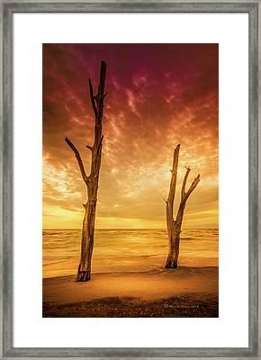 Stump Pass Framed Print