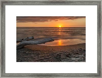 Stump Sunset Framed Print