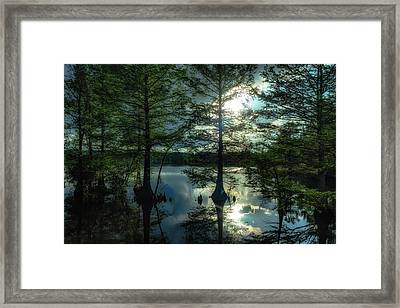Stumpy Lake Framed Print