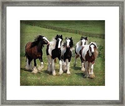 Stunning Beauty Framed Print