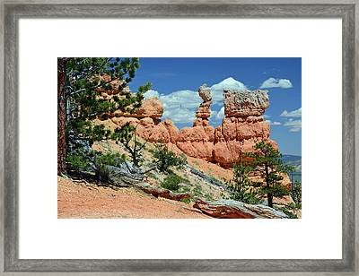 Framed Print featuring the photograph Stunning Bryce Canyon National Park Backcountry by Bruce Gourley