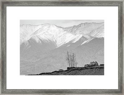 Stupa And Trees Framed Print by Hitendra SINKAR