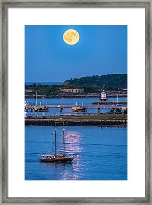Sturgeon Moon Over White Head II Framed Print by Tim Sullivan