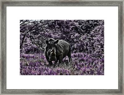 Styled Environment-the Modern Trendy Rhino Framed Print