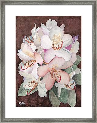 Stylized Rhododendron Framed Print by Ken Powers
