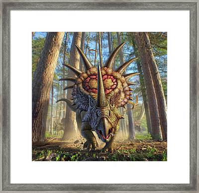 Styracon'roll Framed Print by Jerry LoFaro