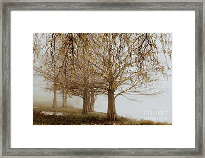 Framed Print featuring the photograph Sublime by Iris Greenwell