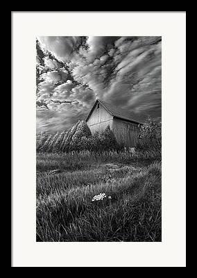 Landscape. Earth. Sky. Life Framed Prints