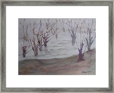Submerged II Framed Print by Jenny Armitage