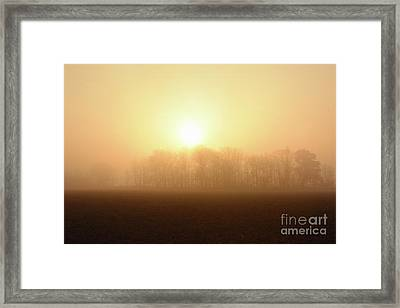 Subtle Sunrise Framed Print