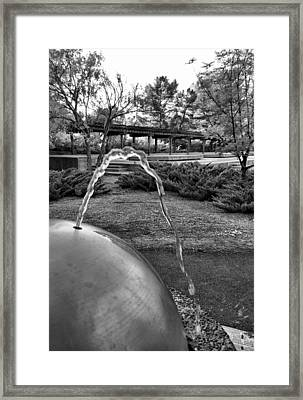 Suburban Thirst Quencher Framed Print