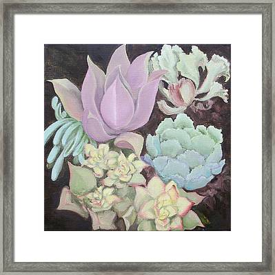 Succulants Framed Print by Irene Corey