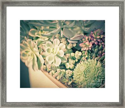 Framed Print featuring the photograph Succulent Garden by Ana V Ramirez