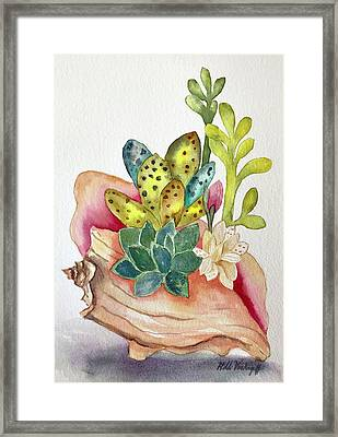 Succulents In Shell Framed Print
