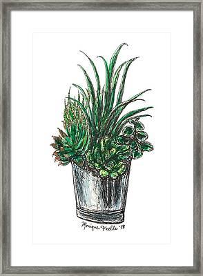 Succulents Framed Print