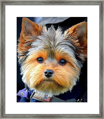 Such A Face Framed Print