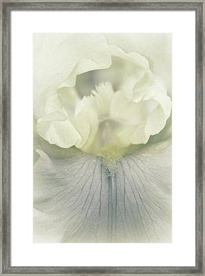 Such Tender Soul Framed Print by The Art Of Marilyn Ridoutt-Greene