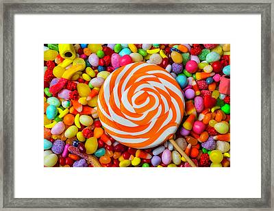 Sucker On Bed Of Candy Framed Print by Garry Gay