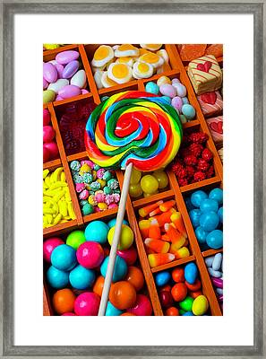 Sucker On Candy Compartments Framed Print by Garry Gay