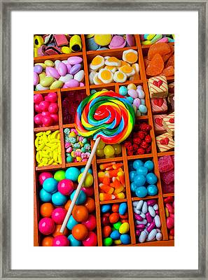 Sucker With Assorment Of Candy Framed Print by Garry Gay