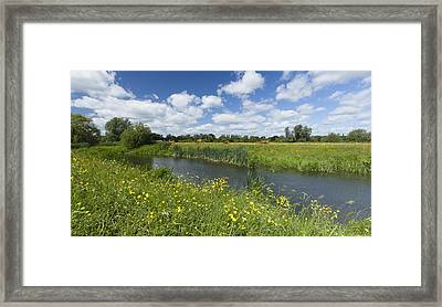 Sudbury Summer Meadows Framed Print by Ian Merton