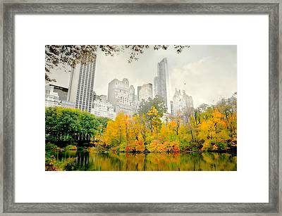 Suddenly Autumn Framed Print by Diana Angstadt