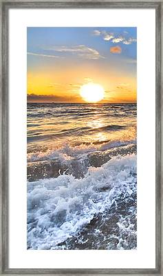 Sudsy Vertical I Framed Print by Debra and Dave Vanderlaan