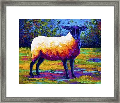 Suffolk Ewe 2 Framed Print
