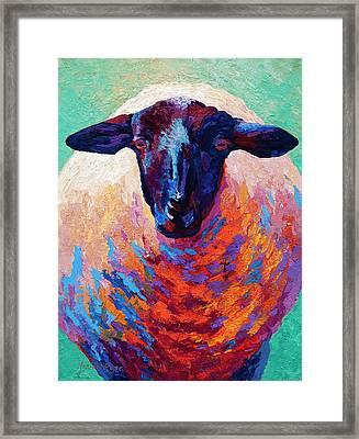 Suffolk Ewe Framed Print
