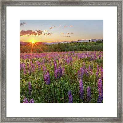 Sugar Hill New Hampshire Framed Print by Bill Wakeley