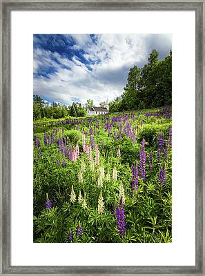 Framed Print featuring the photograph Sugar Hill by Robert Clifford