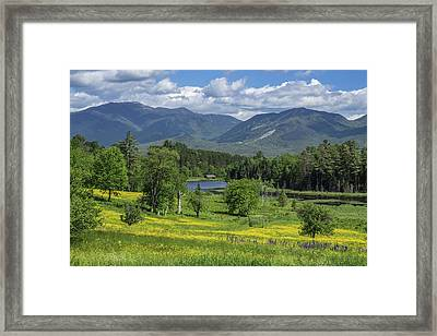 Sugar Hill Springtime Framed Print