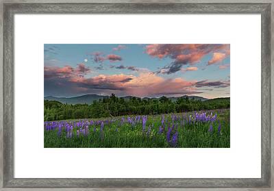 Sugar Hill Sunset Framed Print