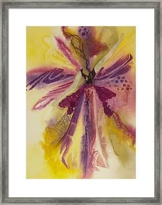 Sugar Plum Fairy Framed Print