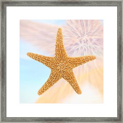 Sugar Starfish Framed Print