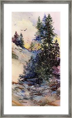 Sugarpines Framed Print