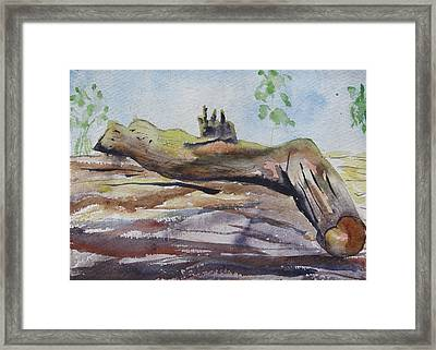 Suicide  Framed Print by Rima