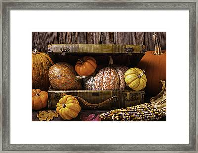 Suitcase Full Of Pumpkins Framed Print by Garry Gay