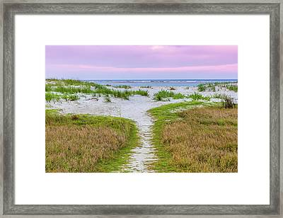 Sullivan's Island Natural Beauty Framed Print